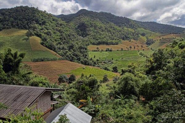 northern thailand hilltribes - jeffrey warner - highlanders - view of northern thailand's highlands